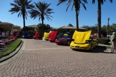 COTG Cars at Pelican